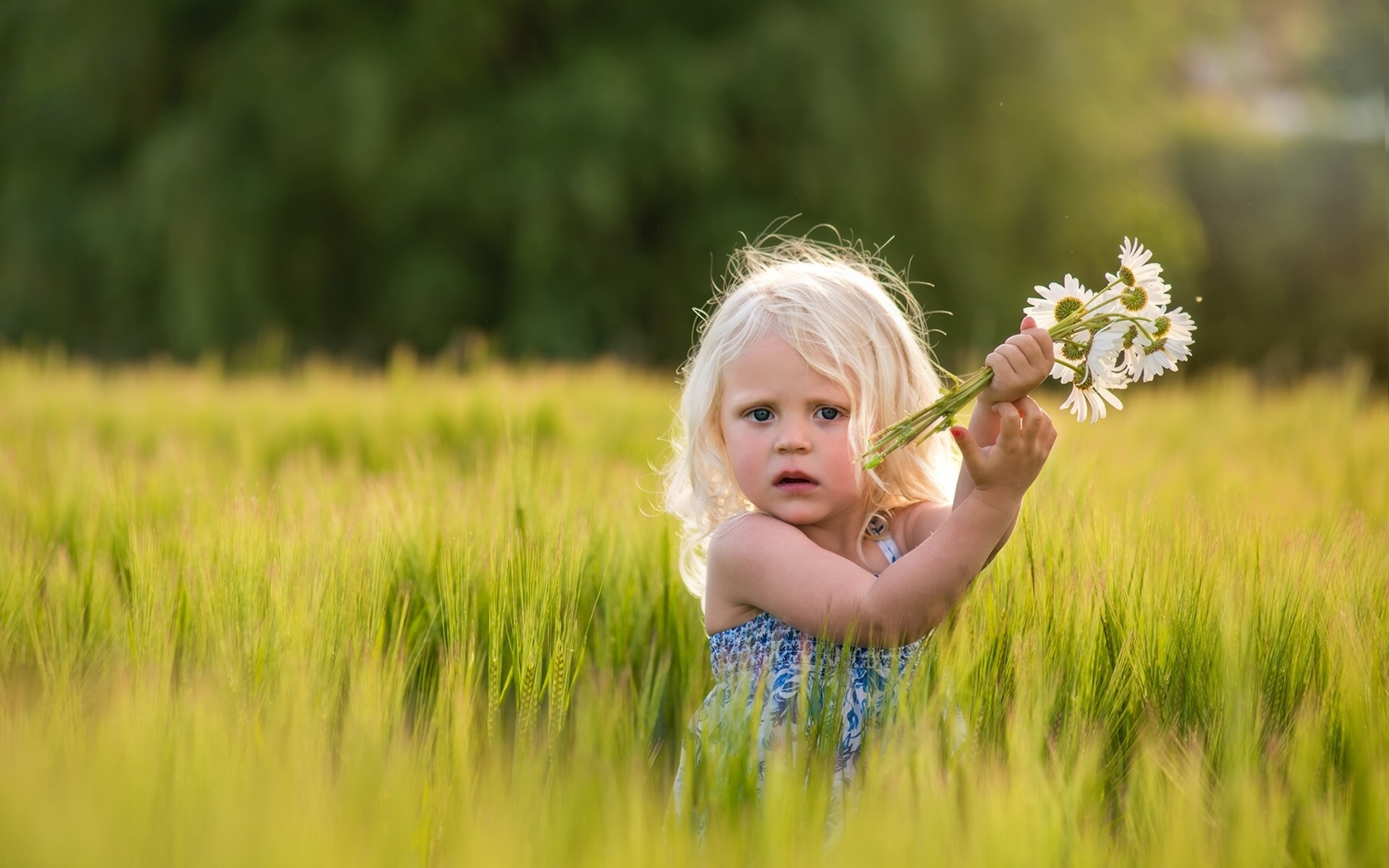 Cute-girl-in-wheat-field-daisies-flowers_1920x1200